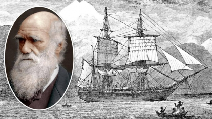 Το ταξίδι του Beagle,του Νίκου Μαντέλα